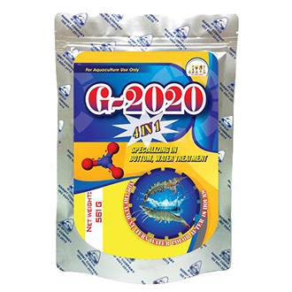 G-2020 4IN1