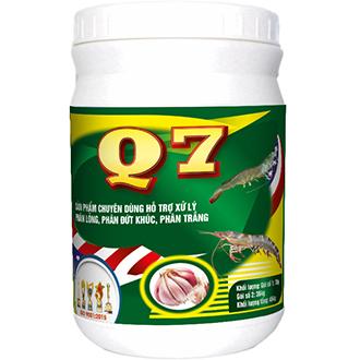 Q7 New