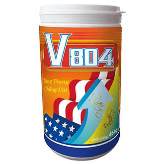 V 804