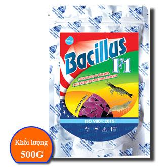 BACILLUS F1
