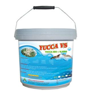 YUCCA VS